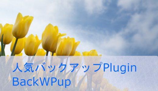 人気のバックアップPlugin BackWPupで保存する。