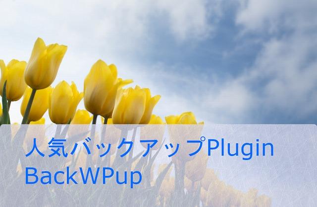 人気のバックアップPlugin BackWPupでバックアップする